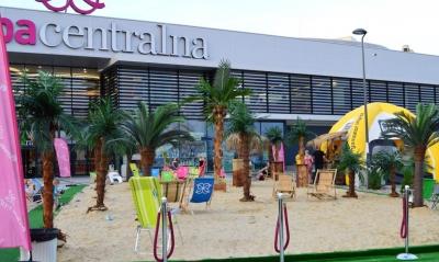 Sztuczne palmy / Sztuczna plaża
