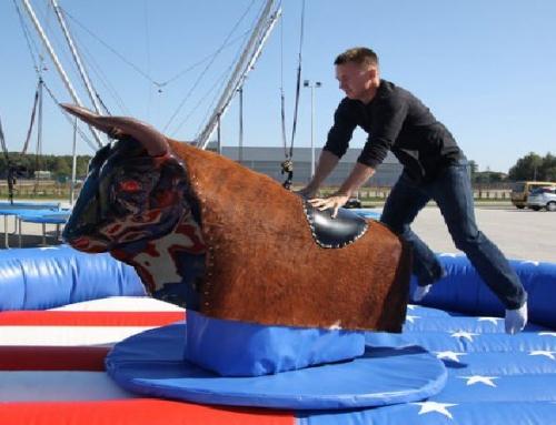 Wynajem byka rodeo