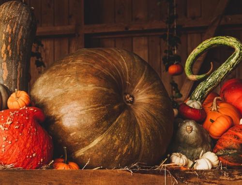 Tradycje i dekoracje na Halloween