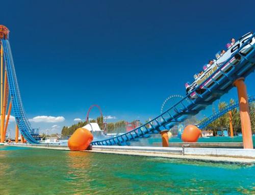 Rodzinny event firmowy w Mirabilandii – największym parku rozrywki we Włoszech