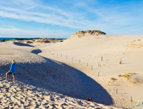 Firmowa wyprawa na wydmy – Łeba i Słowiński Park Narodowy