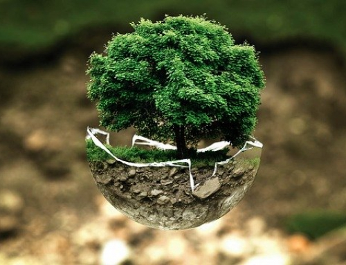 Pomysł na event dla marki, która stawia na ekologię