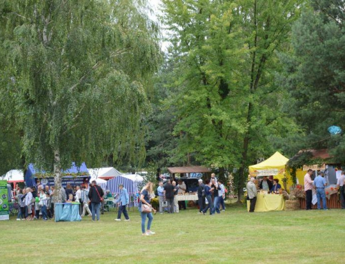 Wyjazd firmowy na festiwal kaszy Gryczaki – Janów Lubelski