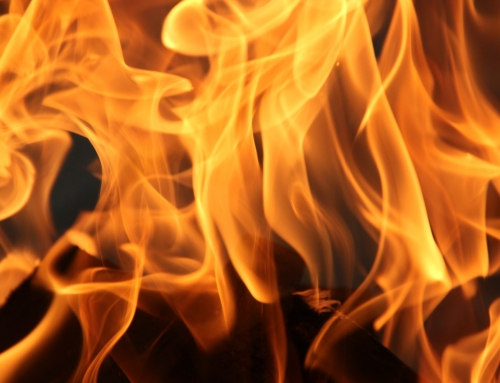 Impreza integracyjna przy ognisku – co przygotować?