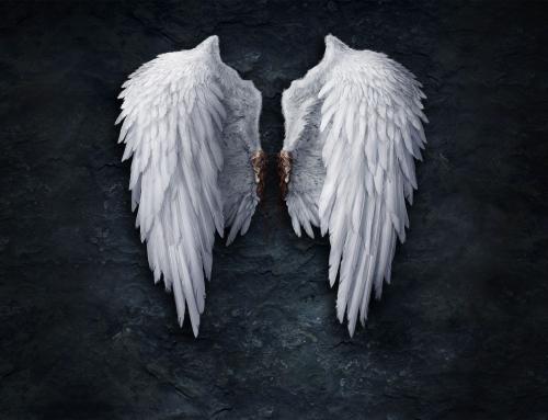 Wing i wid photo – czym to się charakteryzuje?