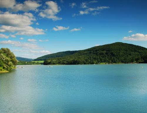 Wyjazd firmowy nad jezioro Solińskie