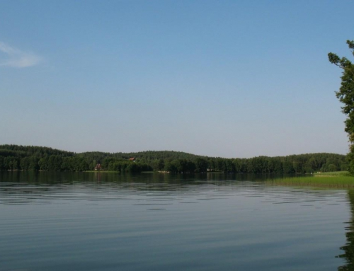 Firmowe wyciszenie nad jeziorem Pluszne