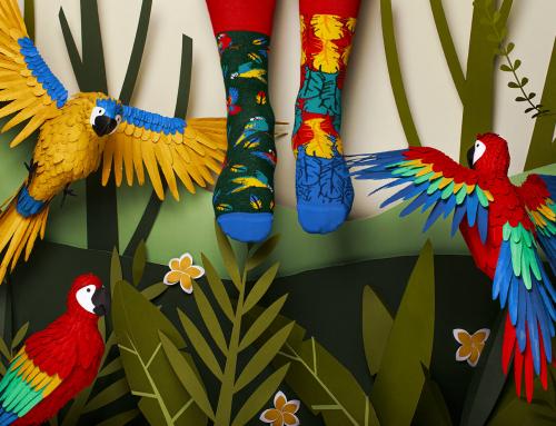Impreza w stylu papug