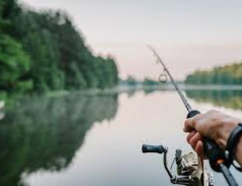 Wyjazd na ryby – jak za starych dobrych lat
