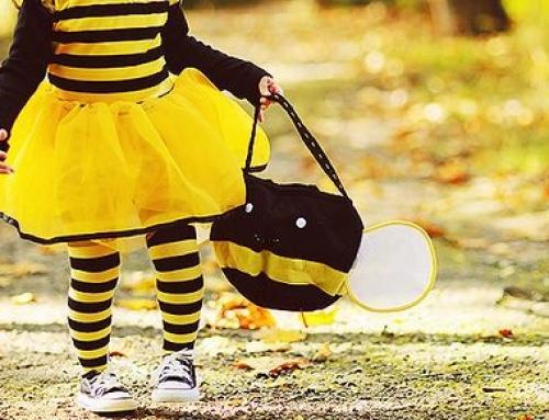Wynajem przebrań postaci z Pszczółki Mai