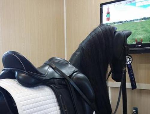 Symulator jazdy konnej